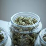Best Marijuana Jars for Storing Cannabis Buds