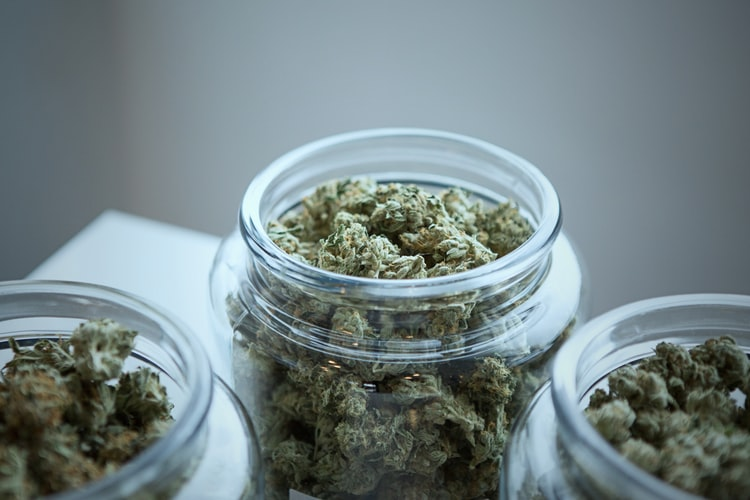 Best Marijuana Jars for Storing Cannabis Buds